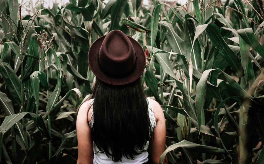 laberint blat de moro